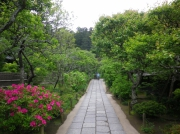 東慶寺の花の回廊
