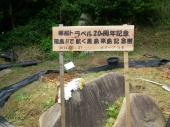郵船トラベル20周年記念黒島来島記念樹看板