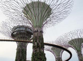 シンガポール植物園(シンガポール)