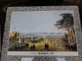 ぺリー提督横浜上陸図に描かれた巨木(右端)